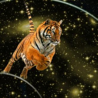 tiger quantum leap hpgl